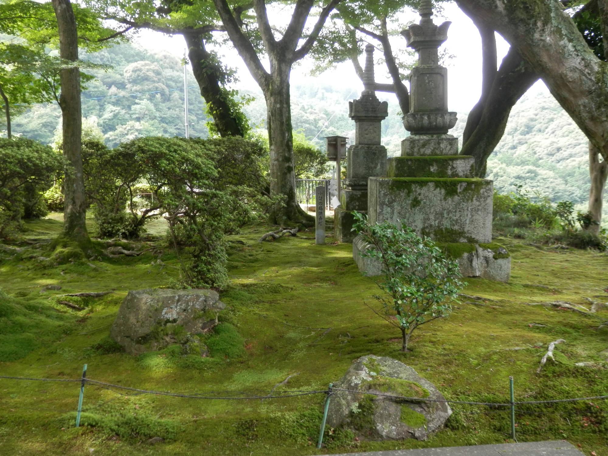 清閑寺 苔の庭