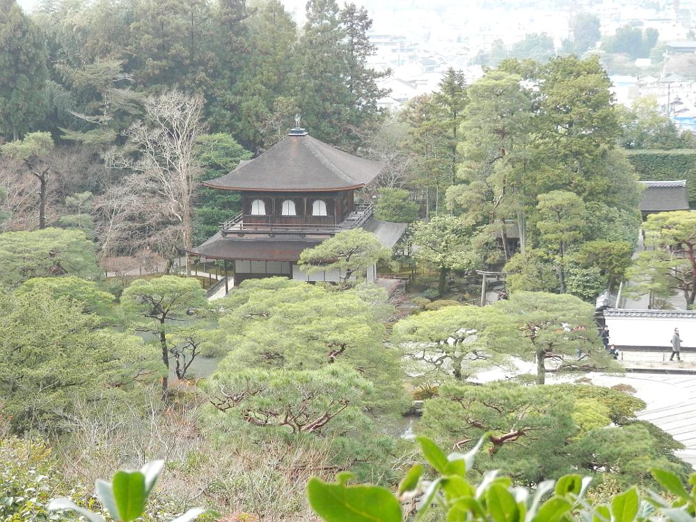 山道からの風景