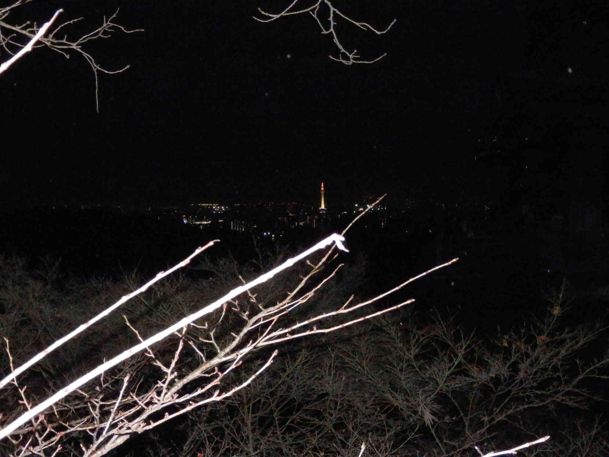 清水寺から見た京都タワー