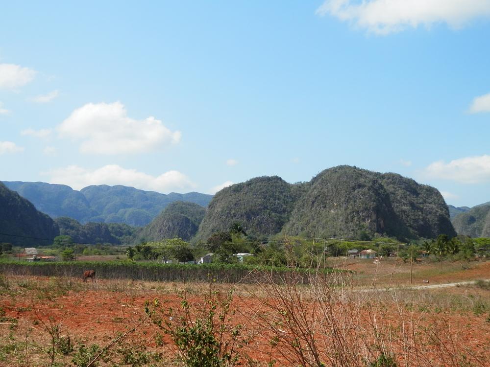 ビニャーレス渓谷ツアー タバコ農園から見た景