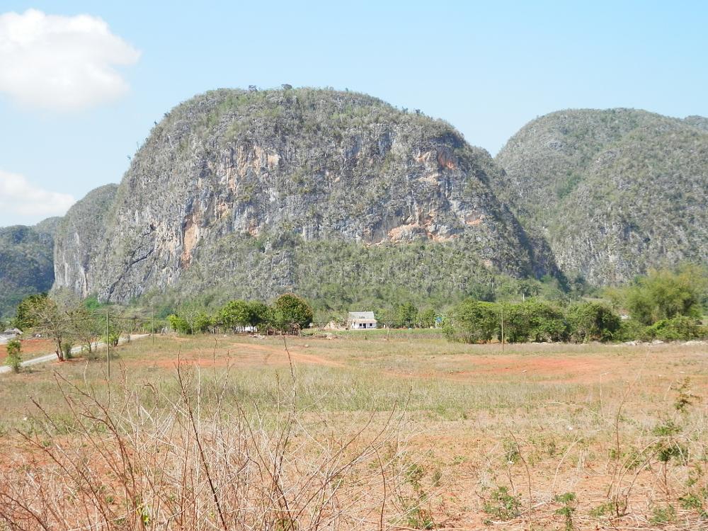 ビニャーレス渓谷ツアー タバコ農園から見た景色