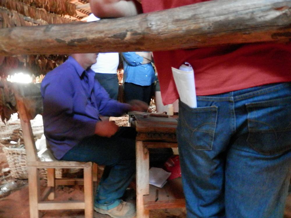 ビニャーレス渓谷ツアー タバコ農園見学 葉巻作り