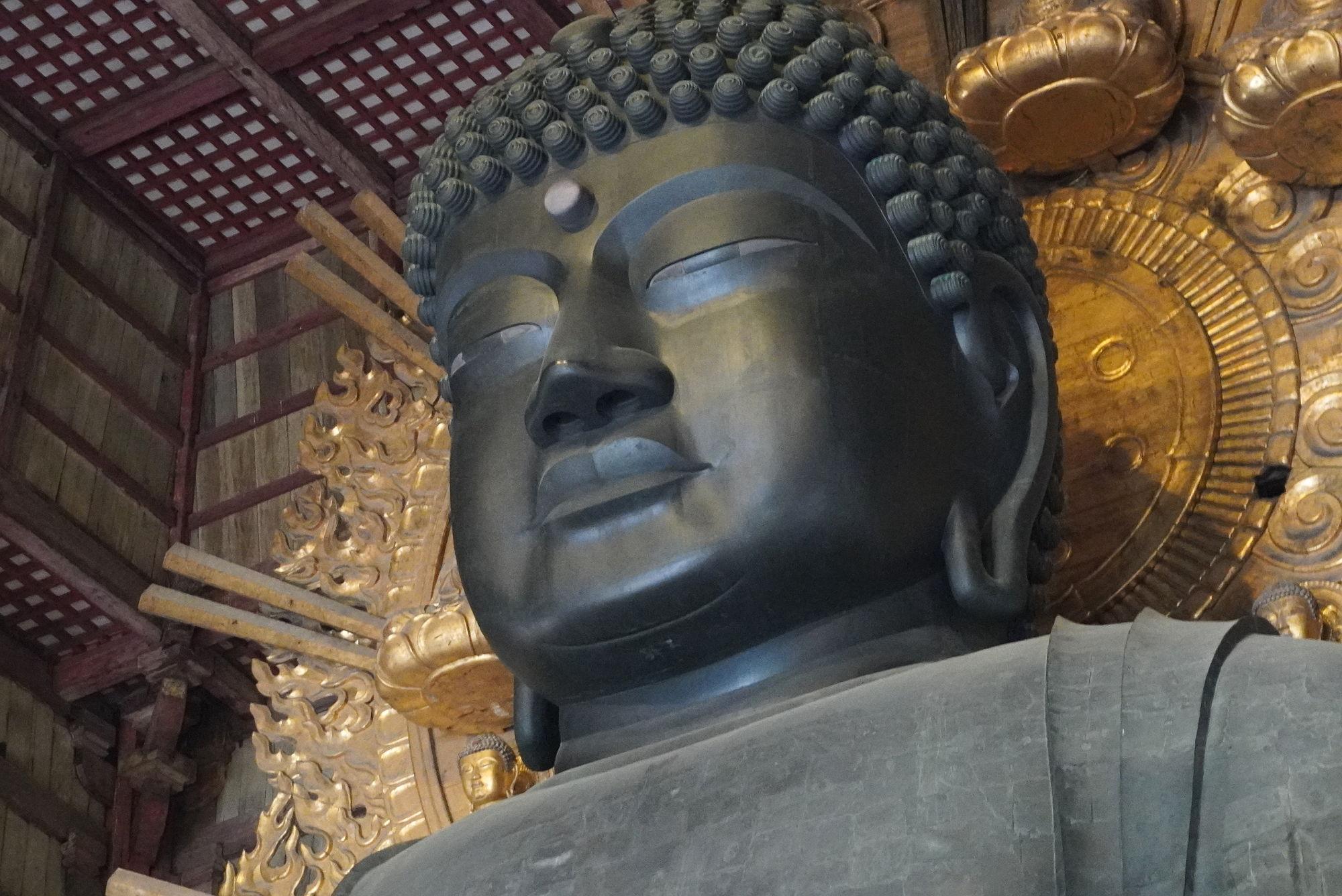 奈良の大仏のアップ