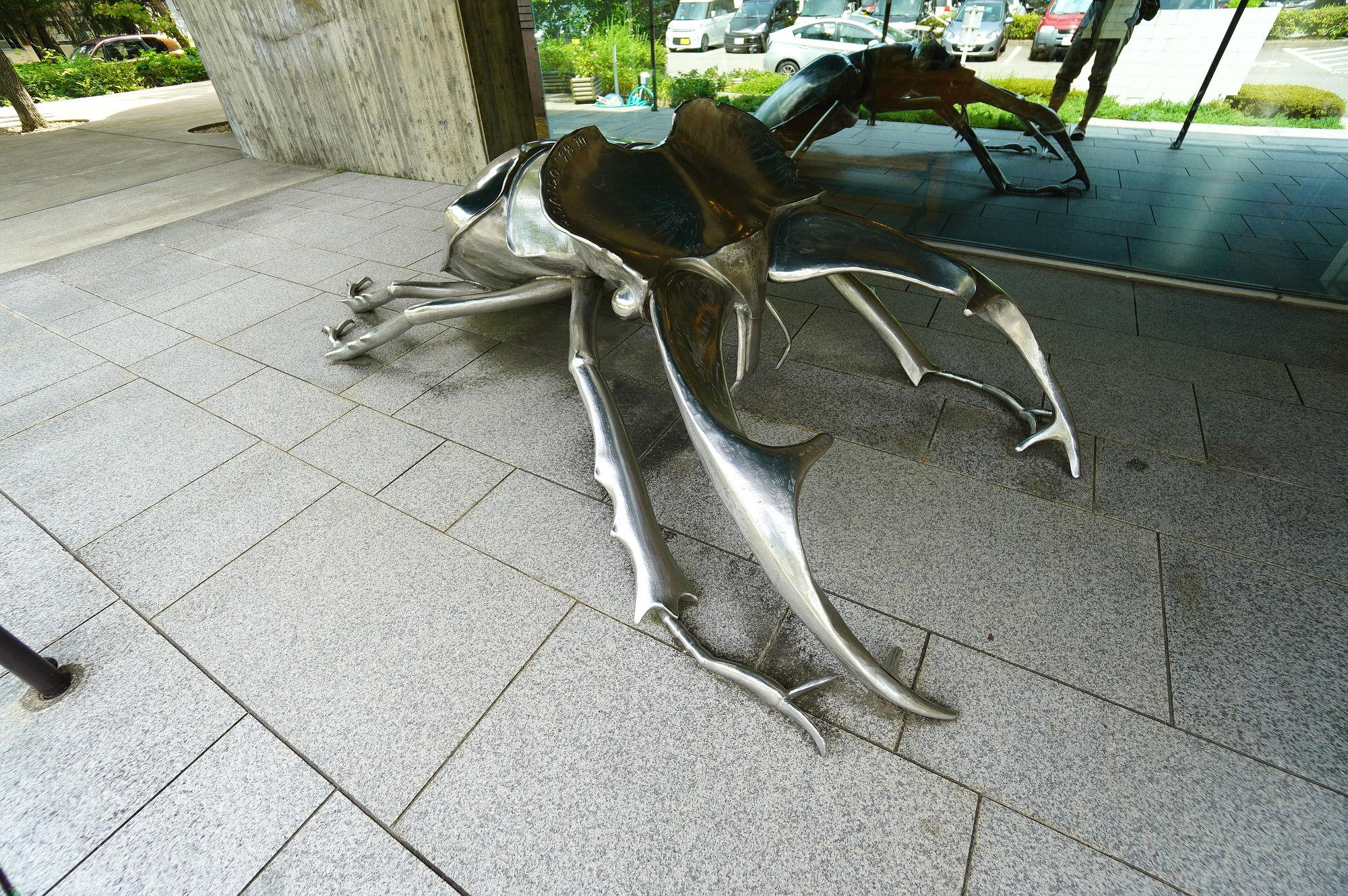 石川県 ふれあい昆虫館