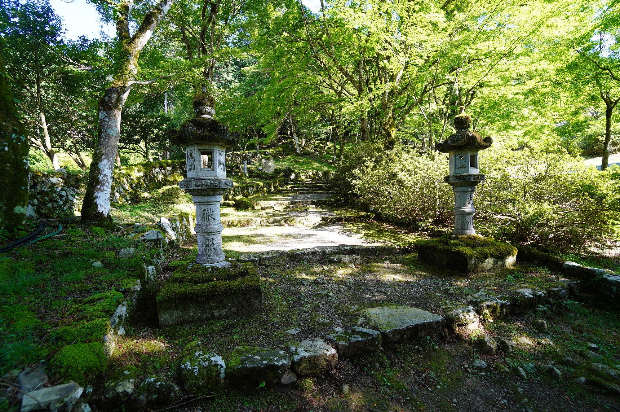 高源寺の参道(紅葉のトンネル)