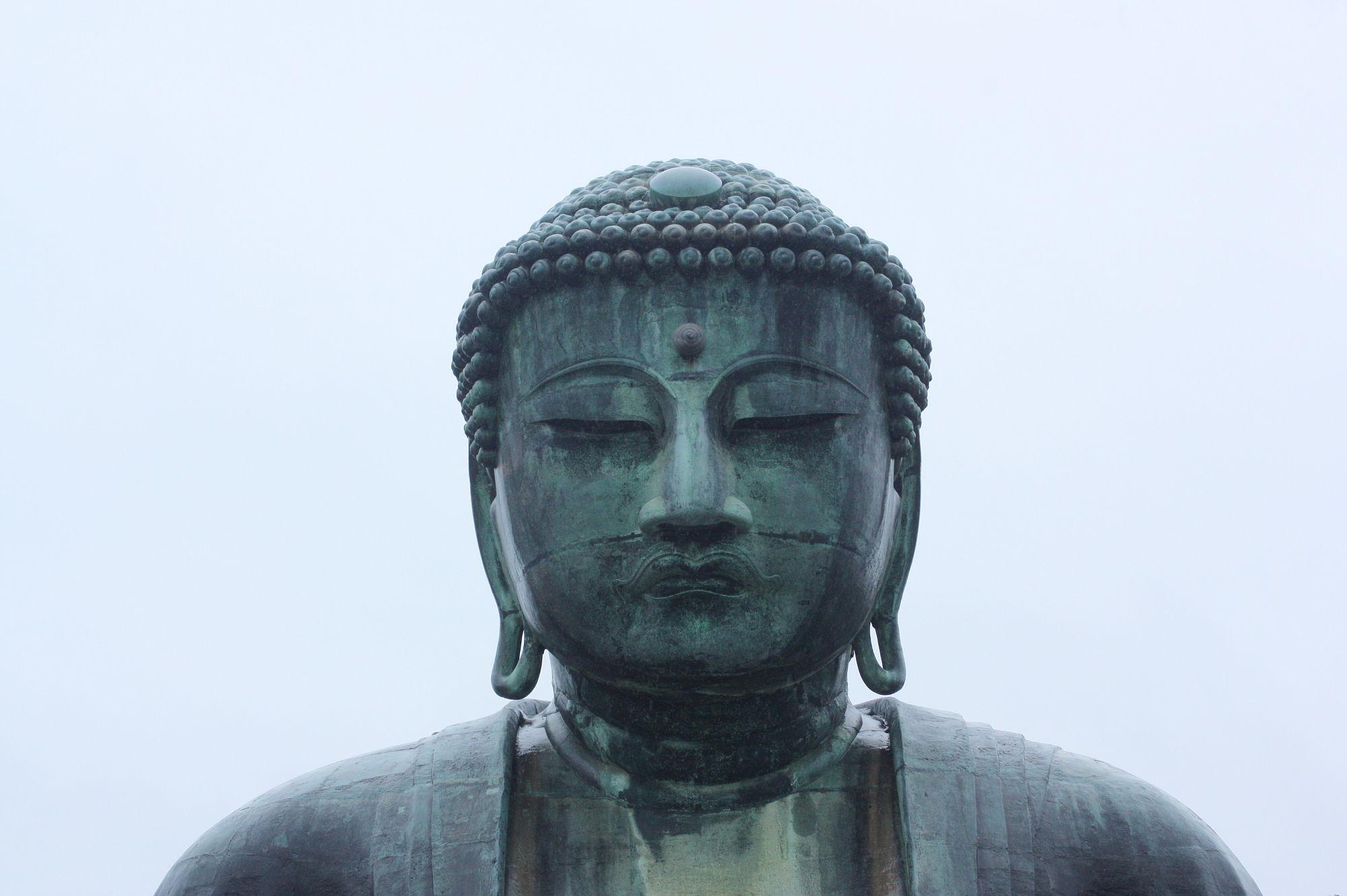 高徳院「鎌倉の大仏」のアップ