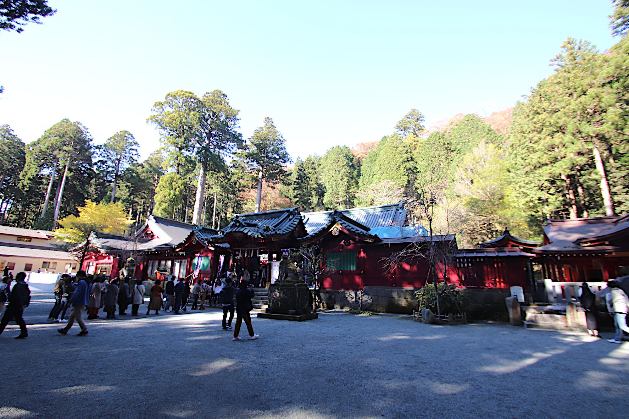 箱根神社の境内