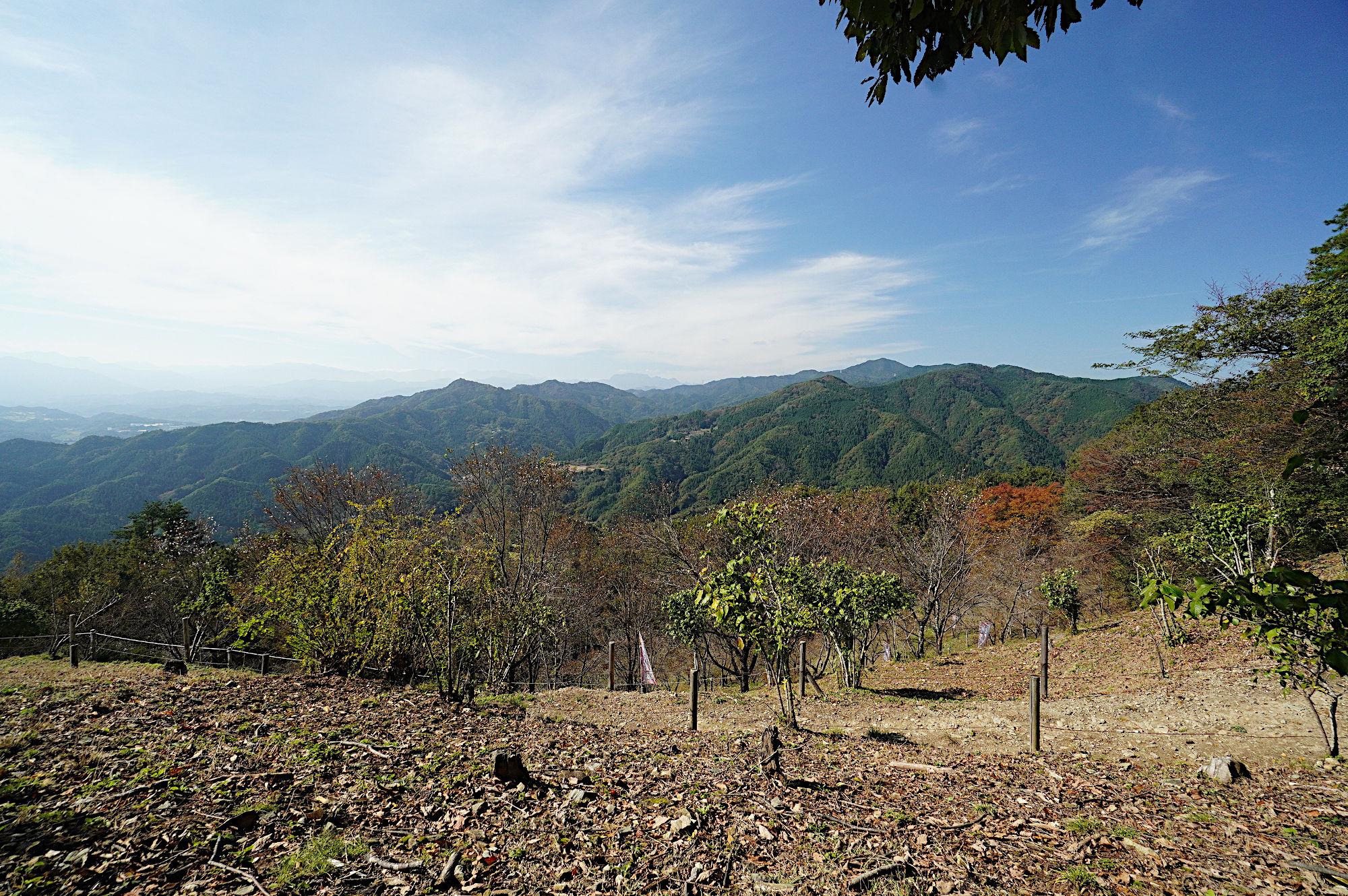 寳登山からの風景