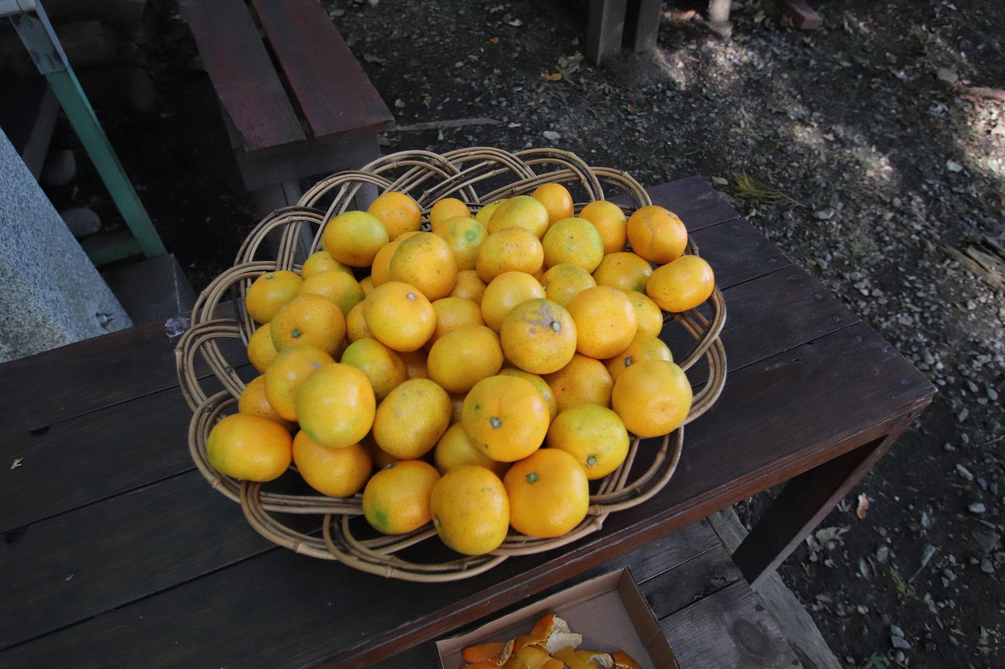 寳登山神社 奥宮前で売っていたミカン